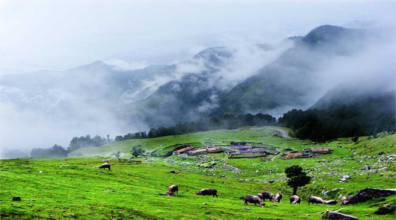chopta valley sikkim