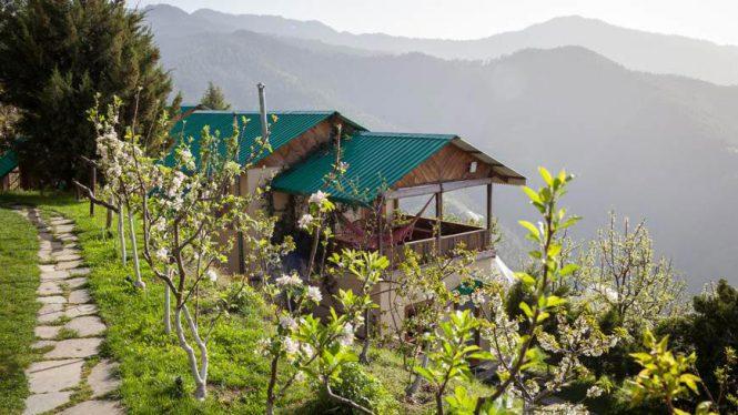 seetalvan-orchards-thanedar-kotgarh-himachal-hotel-16